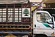 Cedar truck
