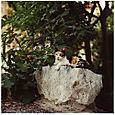 AUB cats #13