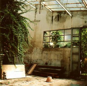 Pisabotanicalshed